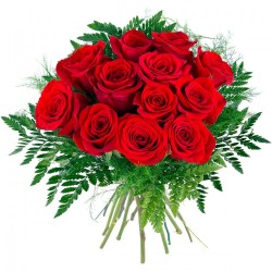 Docena de Rosas Tallo Corto