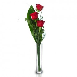 Ramo de 3 Rosas Extra