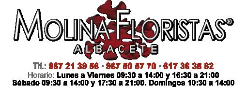 Floristeria Albacete, Molina Floristas Albacete