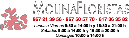 Molina Floristas Albacete